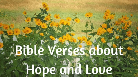 Bible verses about hope and love