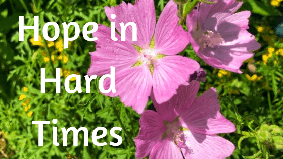 Bible Verses about hope in hard times