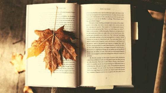 books about seasons